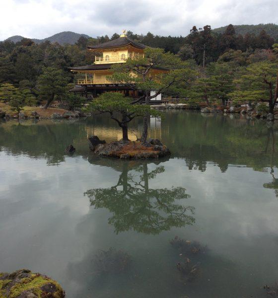 Guest Traveller: Japan